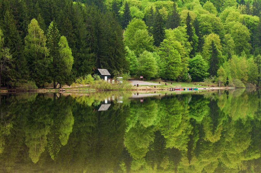 Cat de eco este eco-turismul?